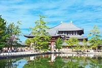 奈良 東大寺  大仏殿と鏡池