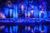 埼玉県 三十槌の氷柱 ライトアップ