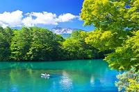 福島県 五色沼の毘沙門沼