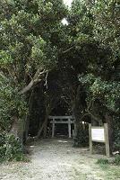 沖縄県 多良間村 多良間島