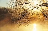 北海道 釧路川の気嵐と霧氷