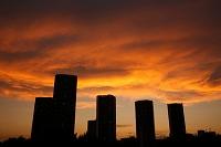 東京都 東雲のタワーマンションと夕焼け