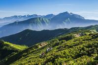 富山県 岩小屋沢岳より朝の後立山連峰