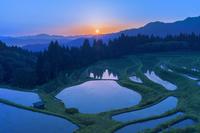 兵庫県 朝日のうへ山の棚田