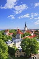 エストニア タリン 旧市街