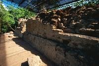 グアテマラ ペテン州 エル・ミラドール遺跡