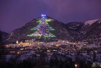 イタリア グッビオ インジーノ山のクリスマスツリー