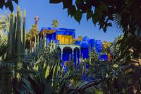 モロッコ マジョレル庭園