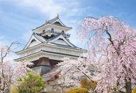 山形県 桜咲く上山城
