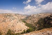 山岳地帯 ヨルダン渓谷 アジュルン近郊 ヨルダン