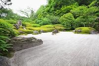 神奈川県 鎌倉 紫陽花寺