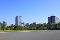 東京都 皇居外苑と日比谷のビル群
