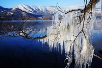 北海道 屈斜路湖のシブキ氷の造型