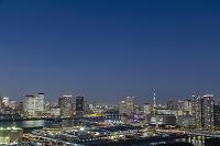 東京都 江東区 豊洲市場建設現場と豊洲、晴海周辺のビル群 夜景