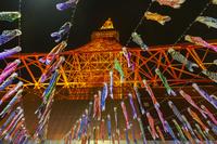 東京都 東京タワー 鯉のぼりのライトアップ