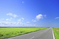北海道 エサヌカ線