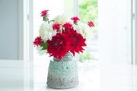 花瓶のダリアの花