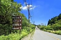 神奈川県 箱根 国道1号の案内板