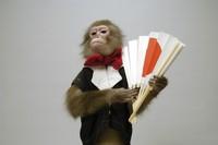 日の丸の扇子を持つ猿