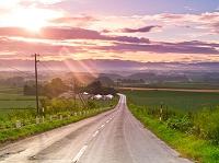 北海道 朝陽のあたる道