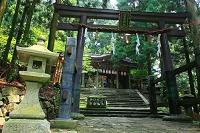 京都府 愛宕神社の千日詣り