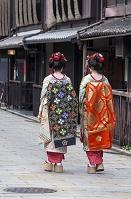 祇園新橋のを歩く体験舞妓