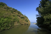 東京都 小笠原 父島 八ツ瀬川と小港海岸