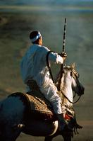 モロッコ 乗馬