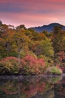長野県 鎌池の紅葉