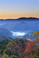 滋賀県 小入峠の雲海