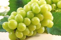 シャインマスカット 葡萄