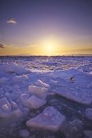 北海道 日の出と流氷と国後島