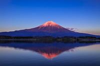 静岡県 田貫湖と富士山の夕景
