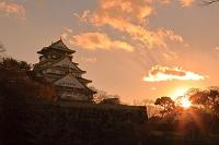 大阪府 夕焼けの大阪城
