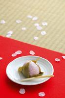 毛氈に置かれた桜餅と桜の花びら