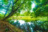 東京都 石神井公園