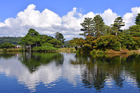 石川県 兼六園の唐崎松と霞ヶ池