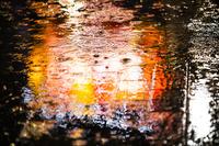 濡れた地面に反射した街のネオン