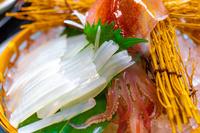 鳥取県 白イカの姿造り