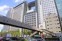 東京都 歩道橋と文化服装学院