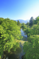 長野県 高度7mから望む上田城の本丸堀と太郎山遠望