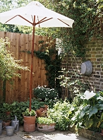 パラソルのある庭