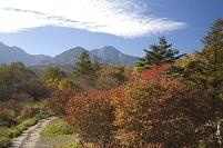 八ヶ岳高原 美し森の紅葉