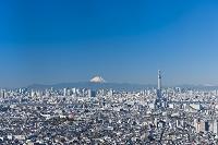千葉県 東京スカイツリー