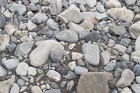 安倍川 下流 平地に出たところ 川原の石