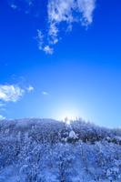 福島県 耶麻郡 北塩原村 雪の裏磐梯