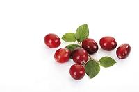 クランベリーの実と葉