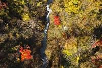 北海道 登別川の紅葉