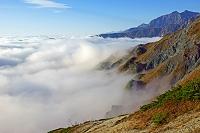 長野県 朝の八方尾根から鹿島槍ヶ岳(右)と雲海