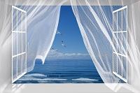 白い窓に白いカーテン